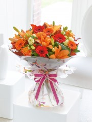 Large Glorious Shades Hand-Tied